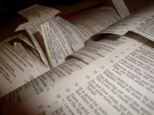 cut-and-paste-bible